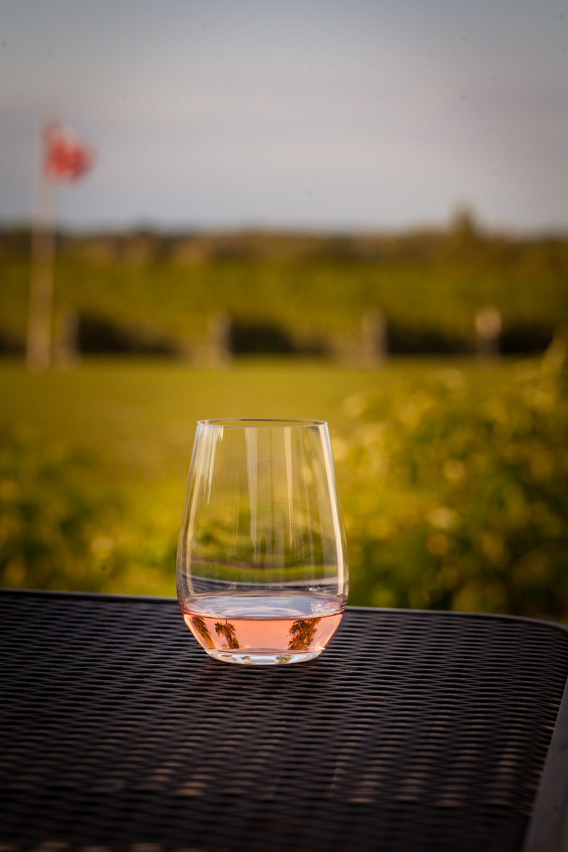 rose glass Modern Mississauga.jpg