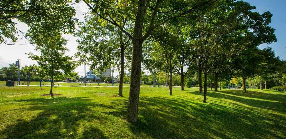 Tom Chater Memorial Park.jpg