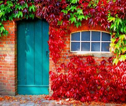 autumn-962755__340.jpg