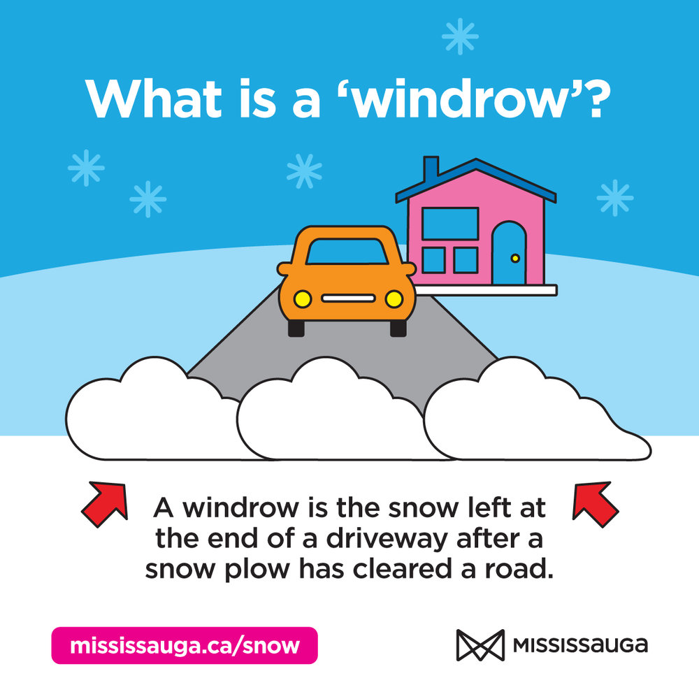 Mississauga windrow modern mississauga media.jpg