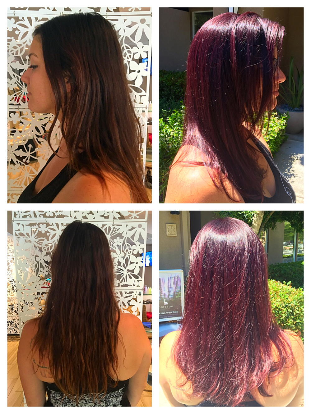 Deep Violet All over Color and Haircut