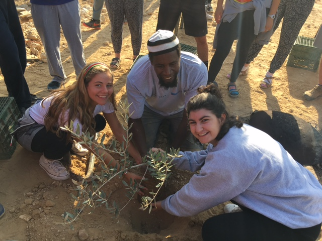 Seeds for Peace in the Negev