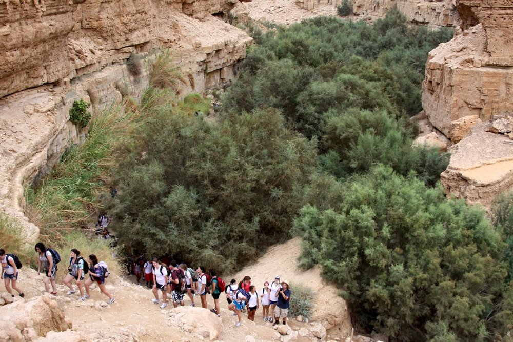Hiking in Canyon of Ein Avdat