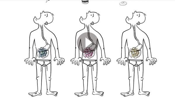 Human-Microbiome.jpg
