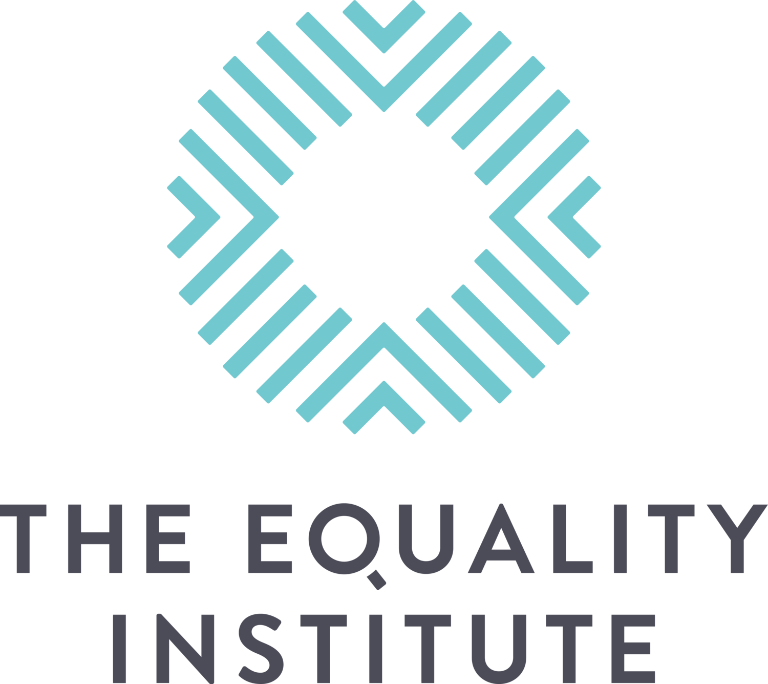 The EQUALITY INSTITUTE