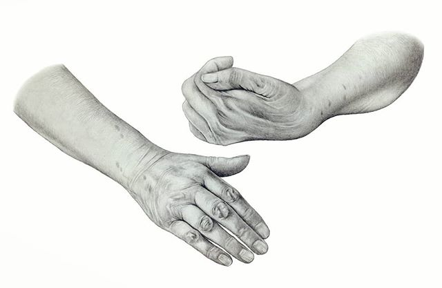 I've been drawing my grandma's hands this week. After a stroke a few years ago she was unfortunately left with hemiplegia (one sided paralysis) and spasticity (muscle tightness) in her hand. This is a preparatory drawing before I paint in Photoshop #hands #hemiplegia #stroke #medicalart #medicalillustration #clinicalappearance