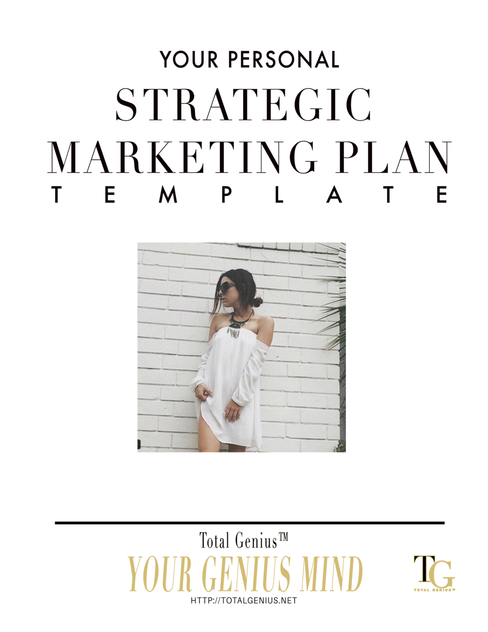 Marketing Plan Template free download