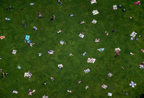 Central-Park-Lawn1.jpg