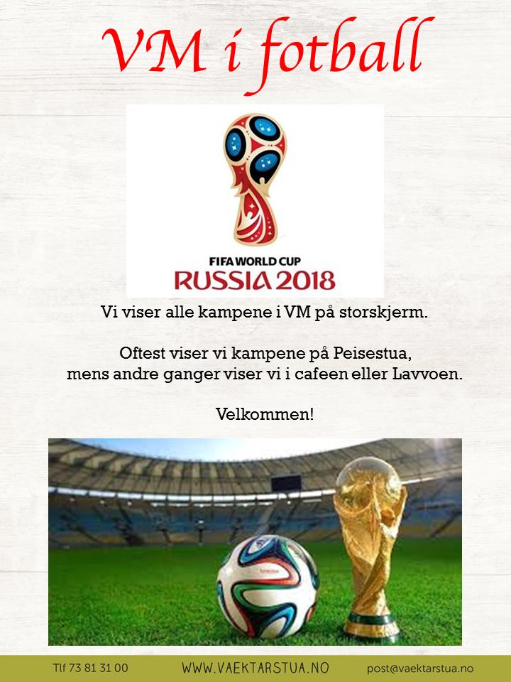 Vm i fotball 201.png