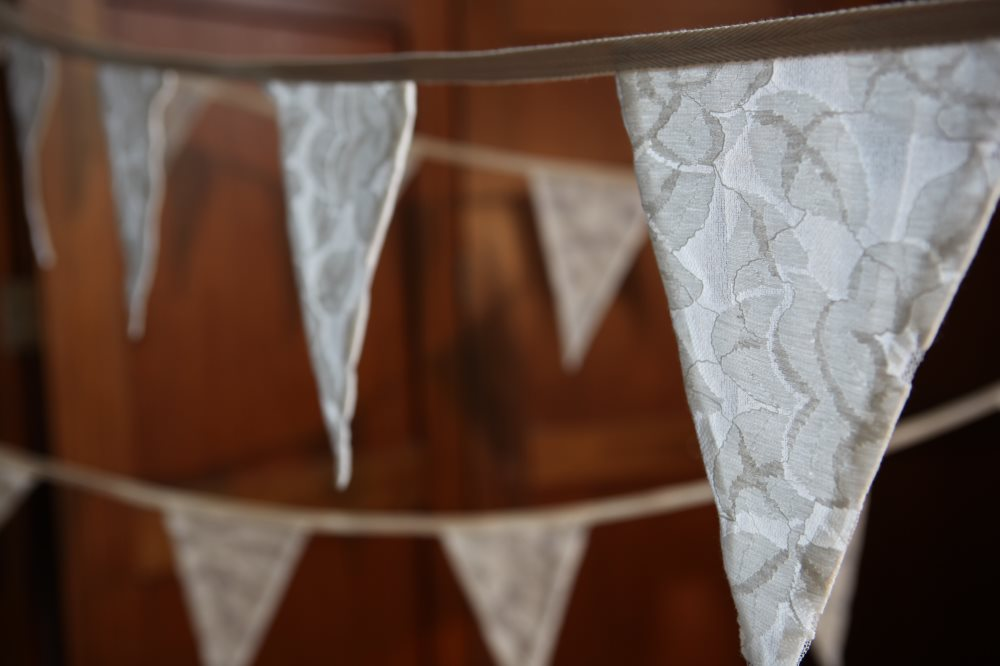 Large Lace Bunting