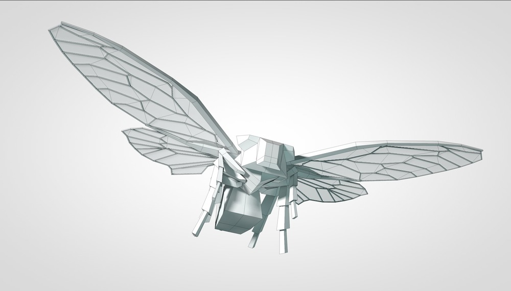 1 Cicada.jpg