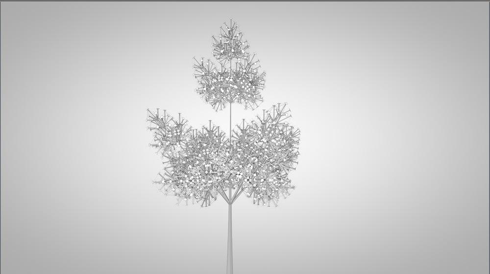 2 Tree.jpg