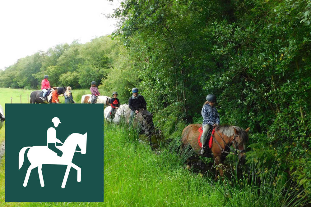 HORSE RIDING Forest Stables are only 10 minutes away –You can have lessons in an arena or a leisurely trek through the Clogher Valley hills and forests. https://www.facebook.com/theforeststables/