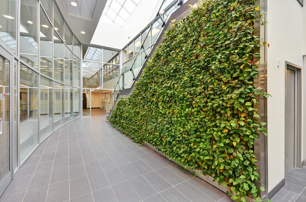 Avaya Fit Up Living Wall 6.jpg