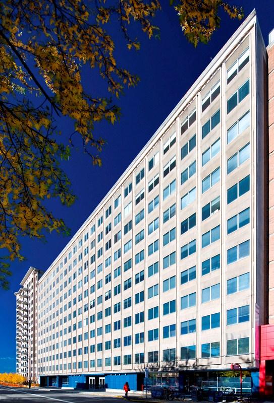 473 Albert Street Exterior 1.jpg