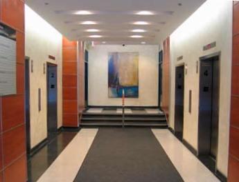 473 Albert Street Interior 1.jpg