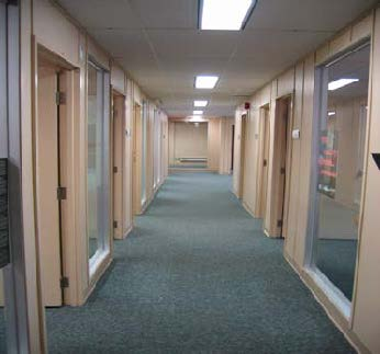 473 Albert Street Interior 3.jpg