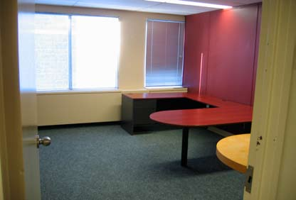 473 Albert Street Interior 5.jpg