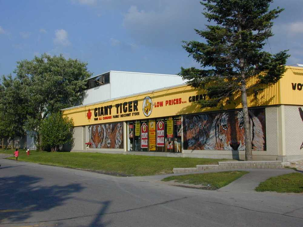 Giant Tiger Manotick Exterior.jpg