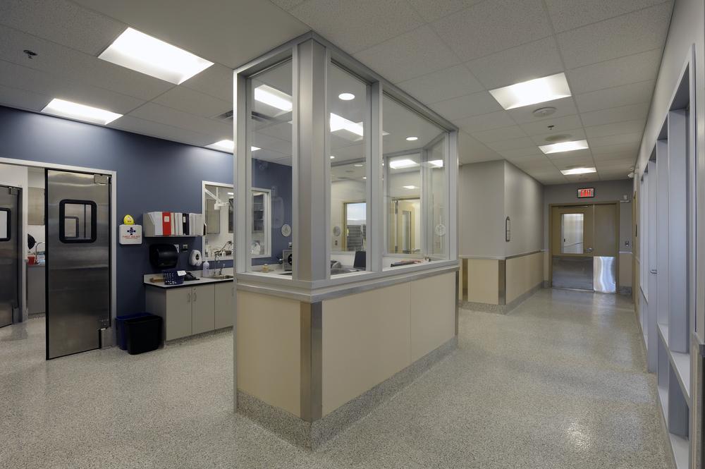 Ottawa Humane Society Interior 30.jpg