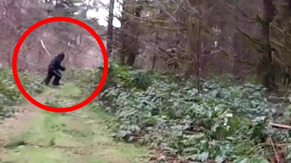Here you go. I circled it so you could more easily detect it in this real life photograph.