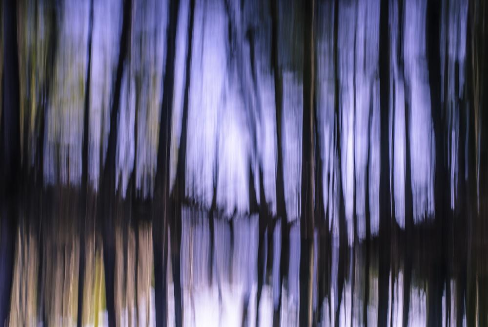 Liquid Landscapes 9