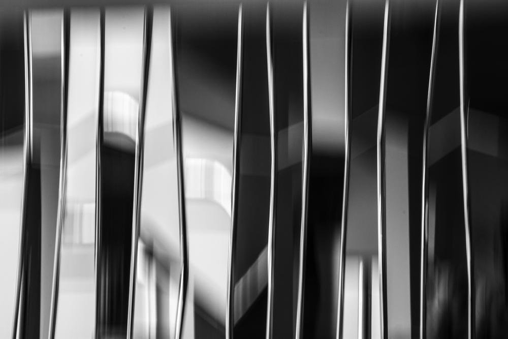Black & White 7