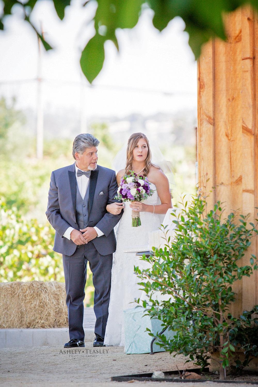 Ashley Teasley Photography - Amador Cellars Winery - Sacramento Wedding Photographer-114.JPG