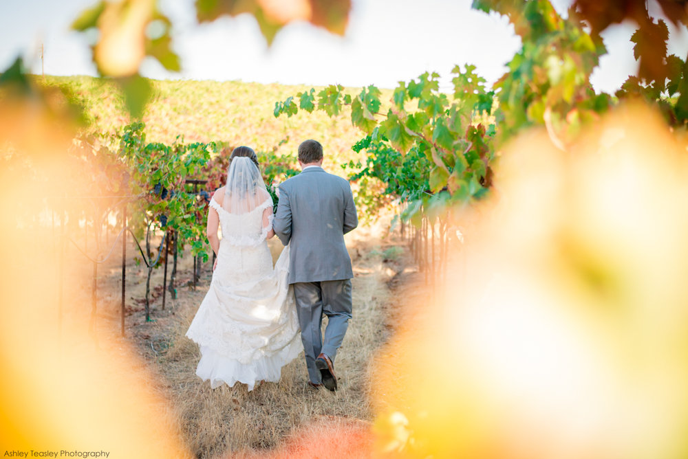 Sacramento, Wedding, Photographer, Photography, Central, California, North, Tahoe, NorCal, Destination, Engagement, Coloma, CA, Amador Cellars, vineyard classic wedding inspiration
