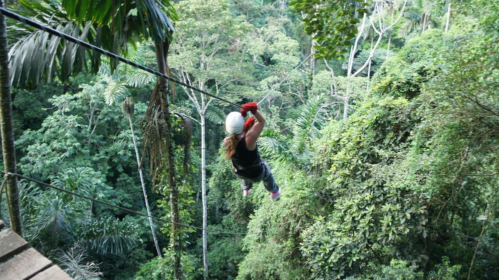 3Ziplining-3-Geckoes-Lodge-Cocles-Puerto-Viejo-Costa-Rica.jpg