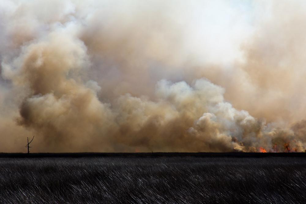 2013 February Marsh Burn.jpg