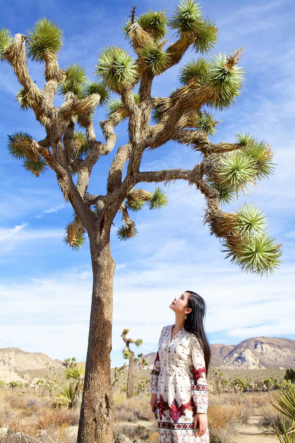 looks_in-the-wild-escape-to-joshua-tree_08.jpg