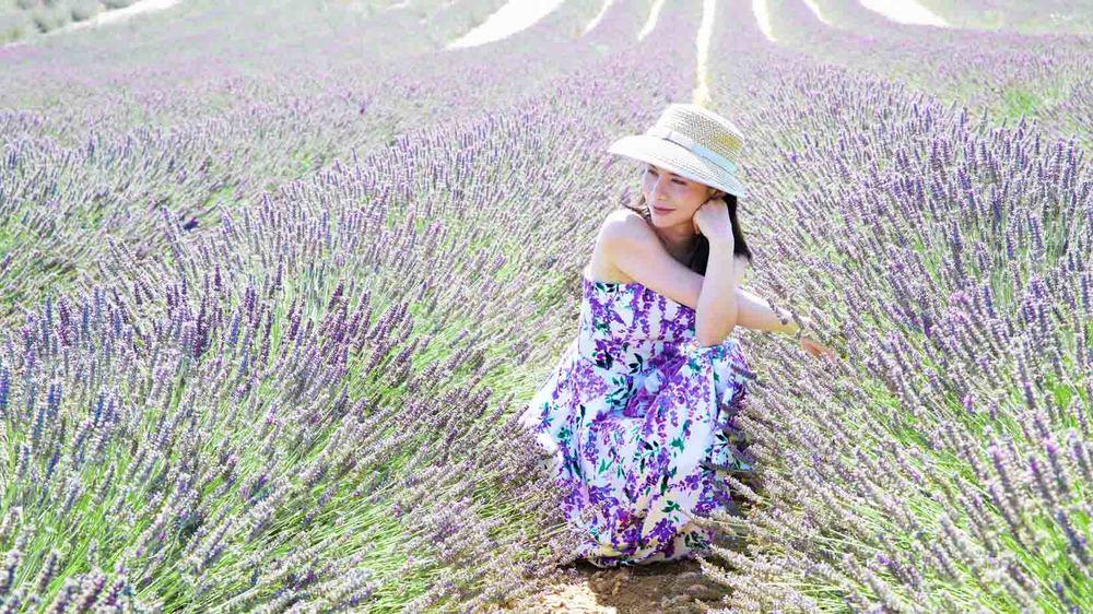 travel_the-purple-fields_04.jpg