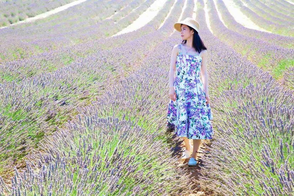 travel_the-purple-fields_03.jpg