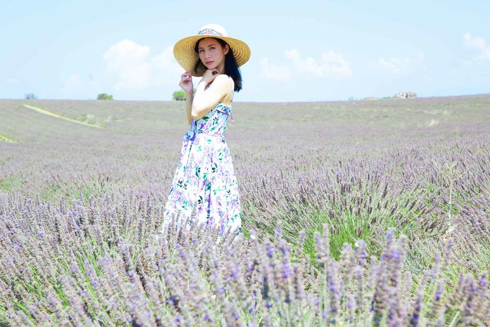 travel_the-purple-fields_06.jpg