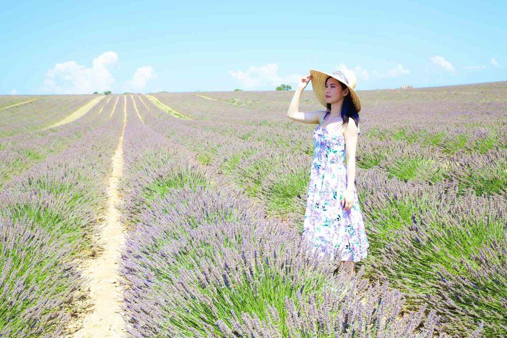 travel_the-purple-fields_05.jpg