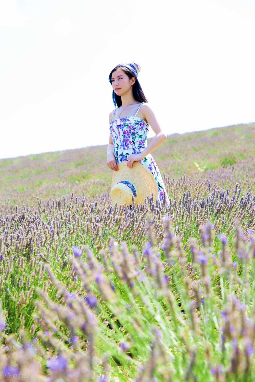 travel_the-purple-fields_08.jpg
