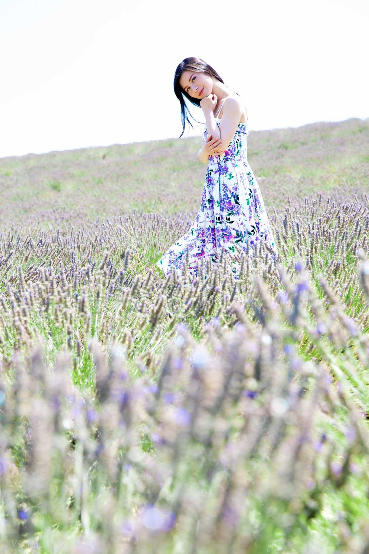 travel_the-purple-fields_10.jpg