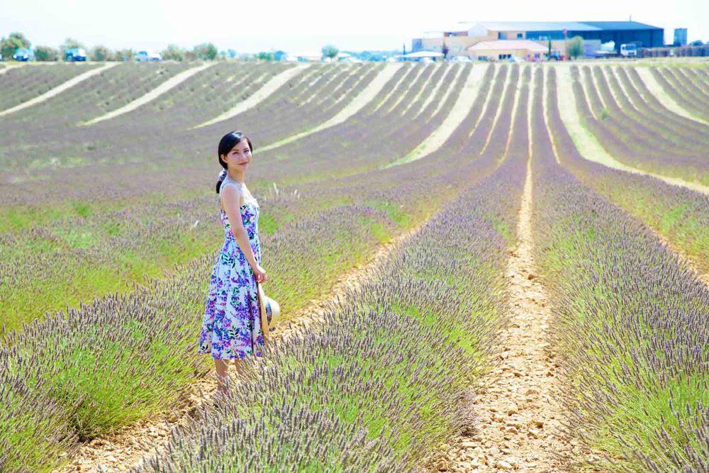 travel_the-purple-fields_11.jpg