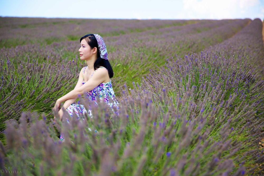 travel_the-purple-fields_14.jpg