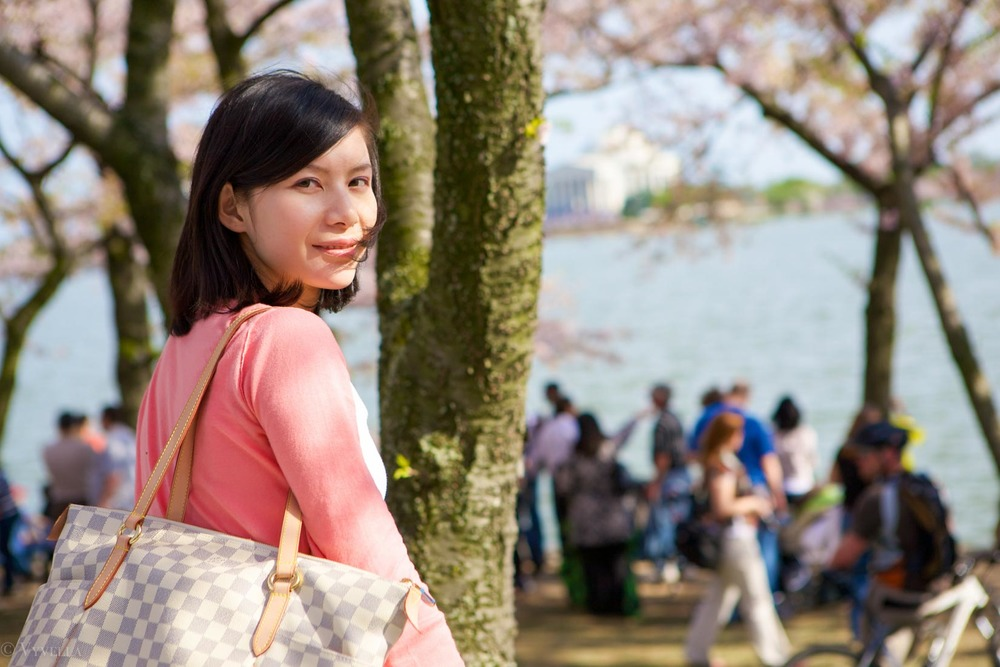 travel_cherry-blossom-and-youth_06.jpg