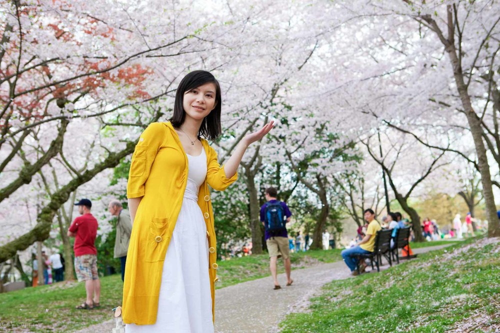 travel_cherry-blossom-and-youth_10.jpg
