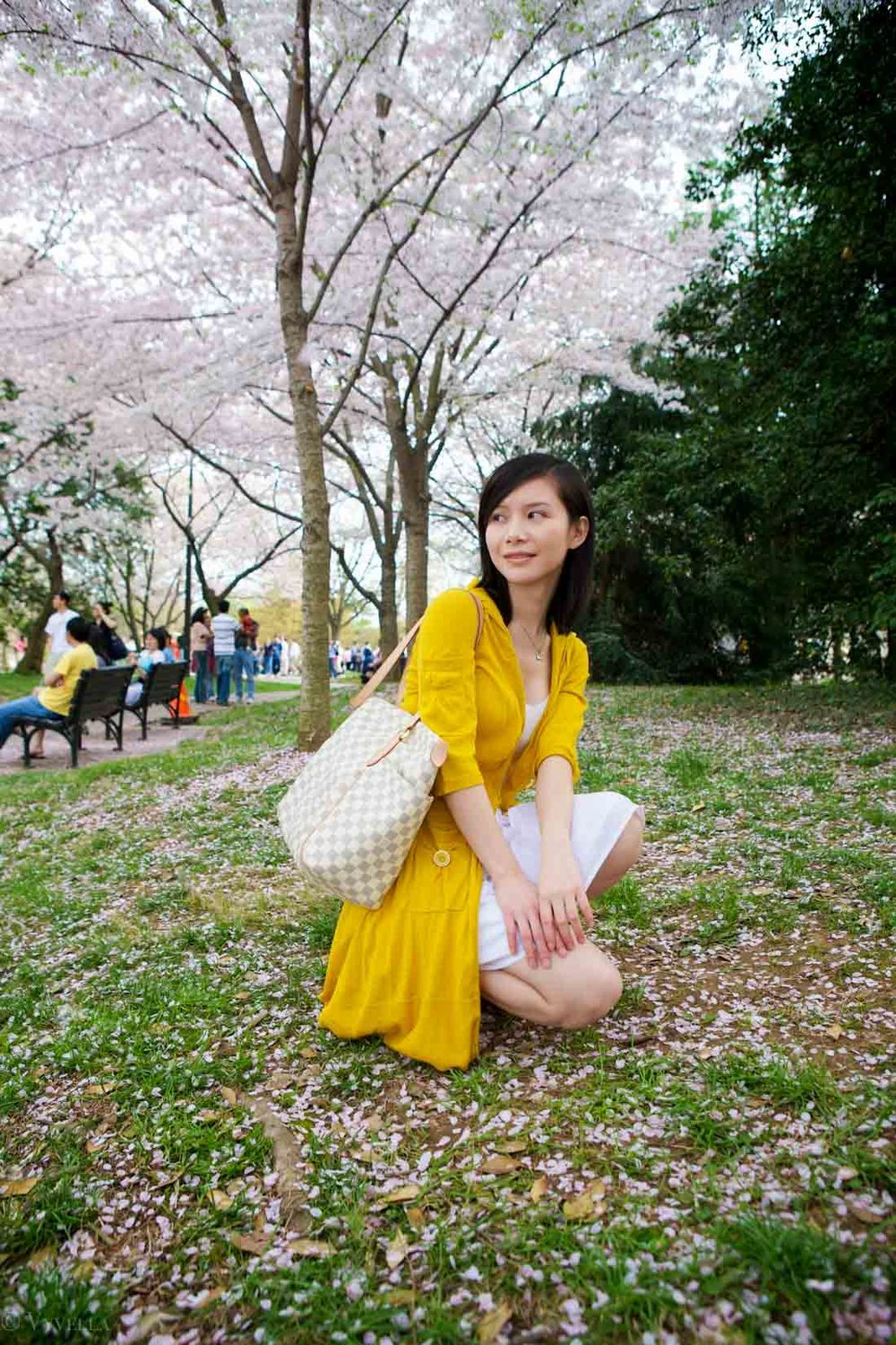 travel_cherry-blossom-and-youth_11.jpg