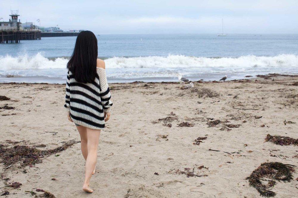 travel_santa-cruz-beach-boardwalk_07.jpg