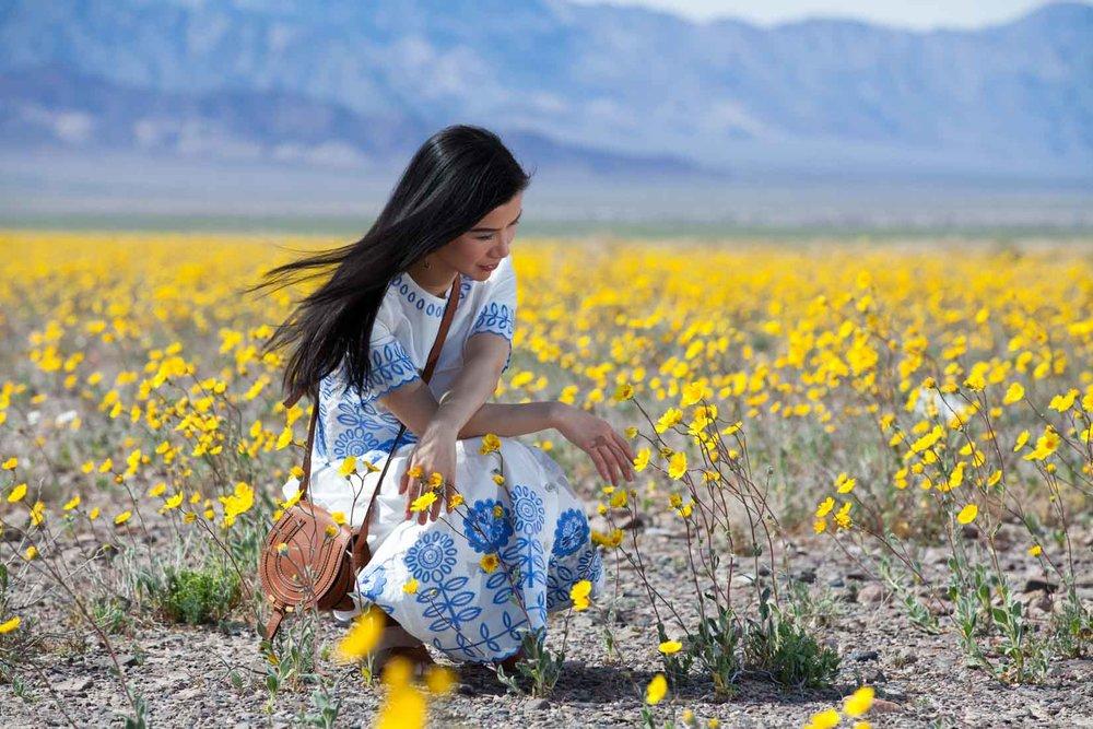 travel_death-valley-wildflower-super-bloom-2016_04.jpg