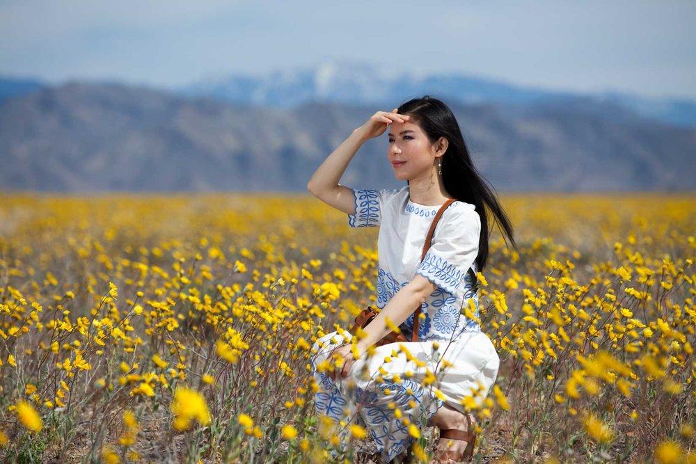 travel_death-valley-wildflower-super-bloom-2016_03.jpg