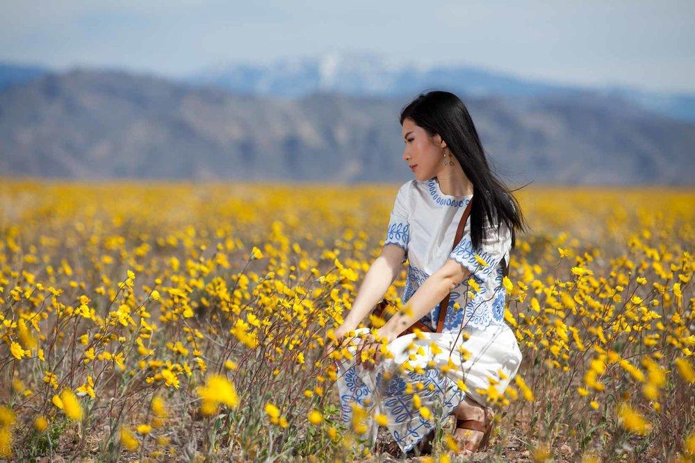 travel_death-valley-wildflower-super-bloom-2016_05.jpg