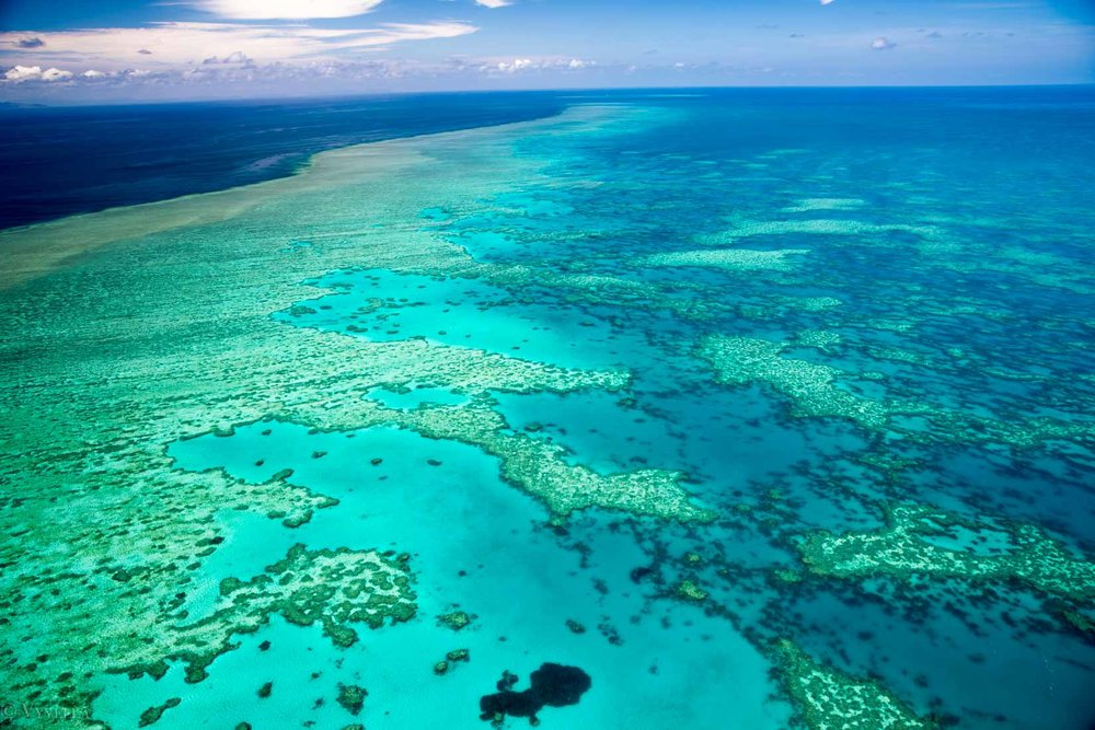travel_a-natural-wonder-of-the-world-the-great-barrier-reef_0g-2.jpg