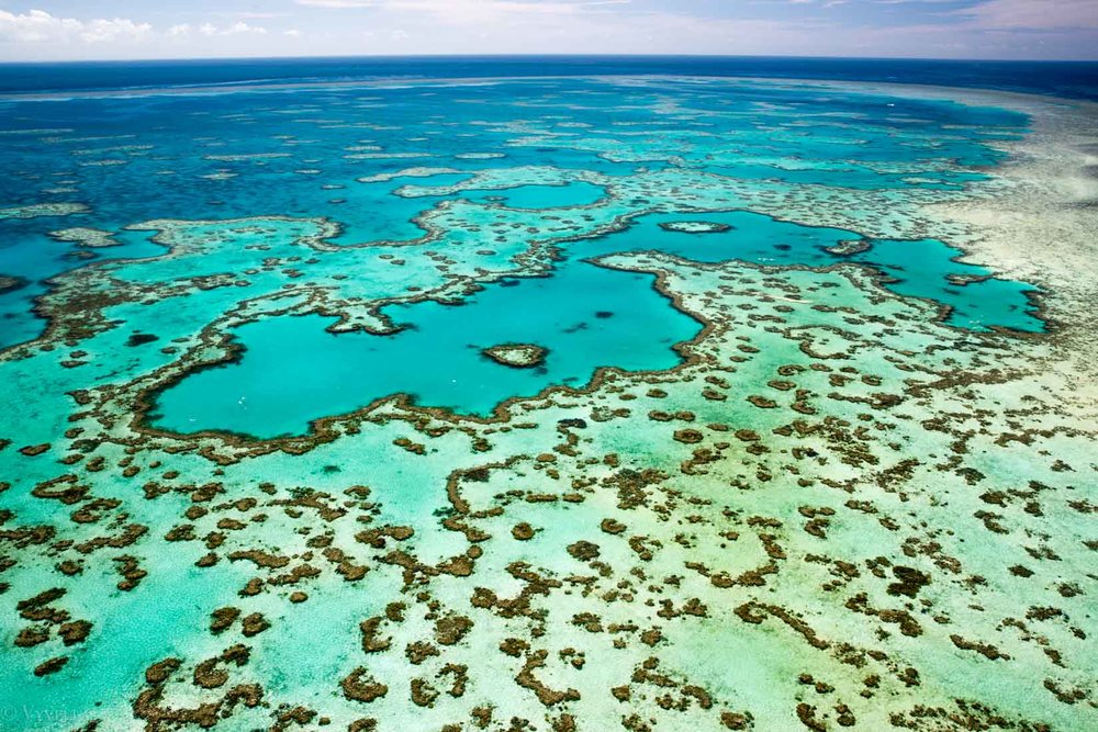 travel_a-natural-wonder-of-the-world-the-great-barrier-reef_0f-3.jpg