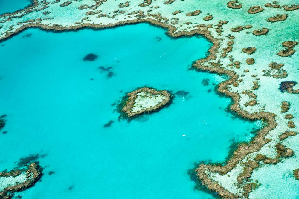 travel_a-natural-wonder-of-the-world-the-great-barrier-reef_0z-2.jpg